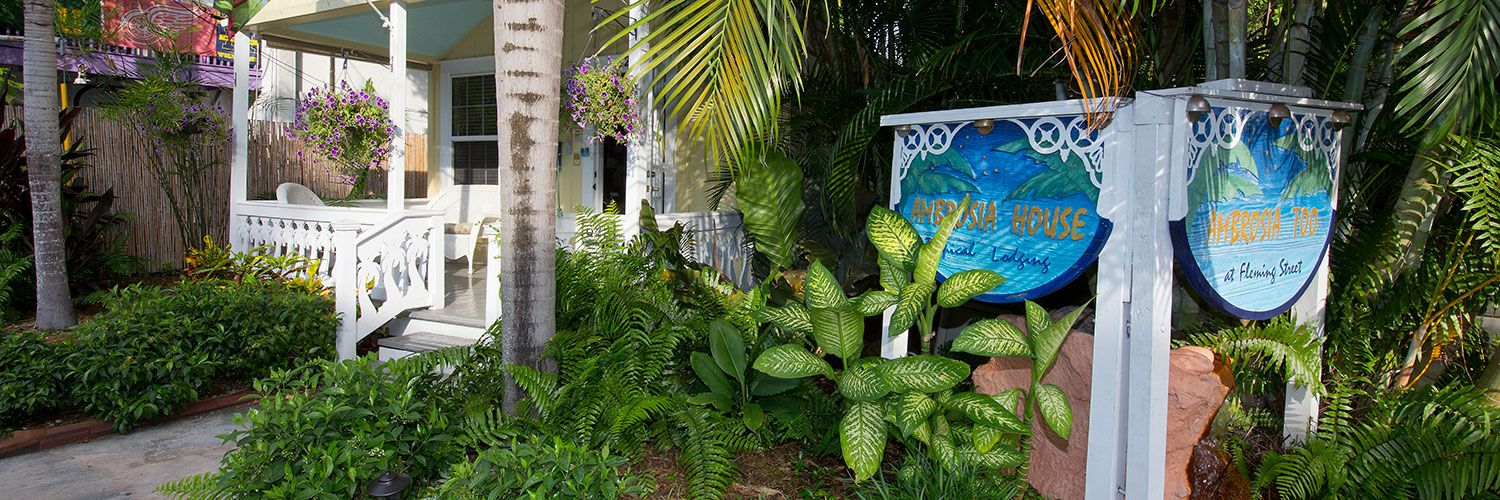 Bed And Breakfasts In Key West 28 Images Bed And Breakfast Key West Ambrosia Key West Best